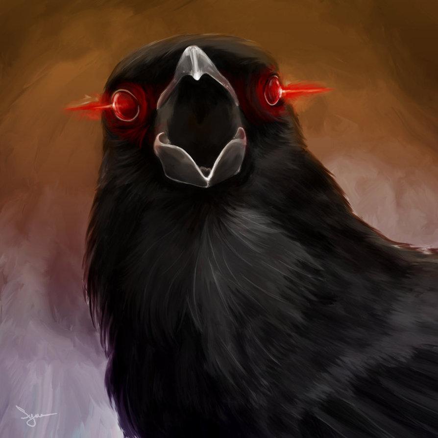 Crow2
