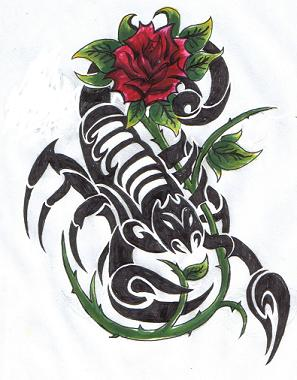 Scorpion and rose tattoo