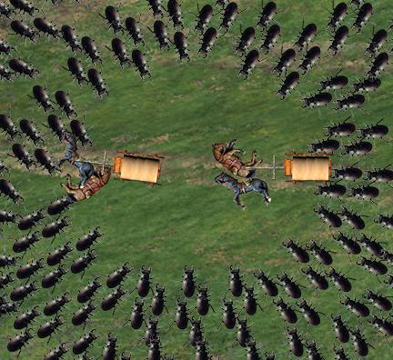 Beetle horde