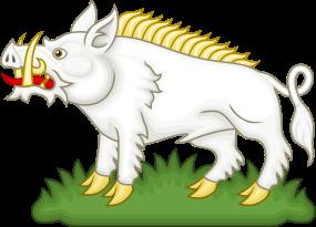 Richard boar badge