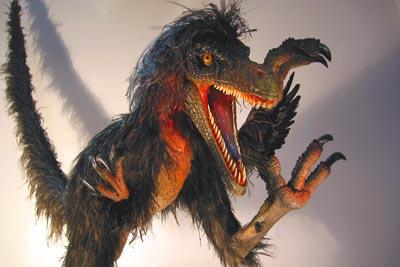 Velociraptor mongoliensis1