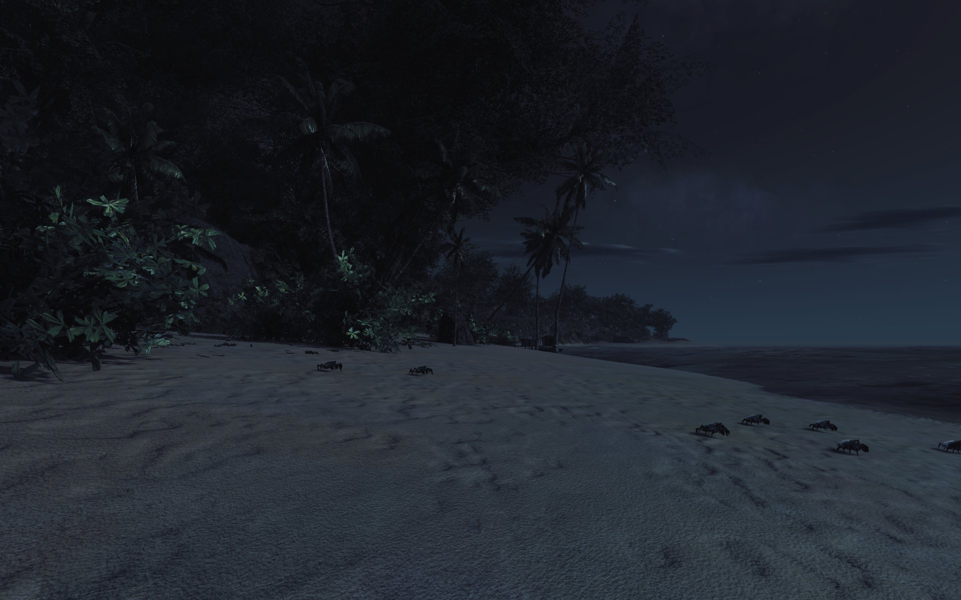 Beach at night b