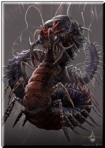 Giant centipede small