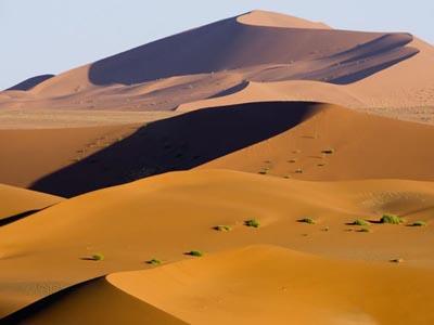 Sodrawtin.desert