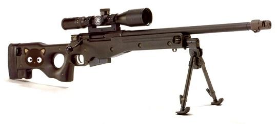 Felicitys sniper rifle