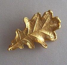 Gold oak leaf