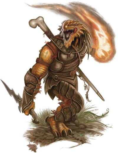 Rohgar dragonborn warden