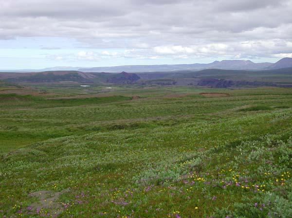 Plains 019