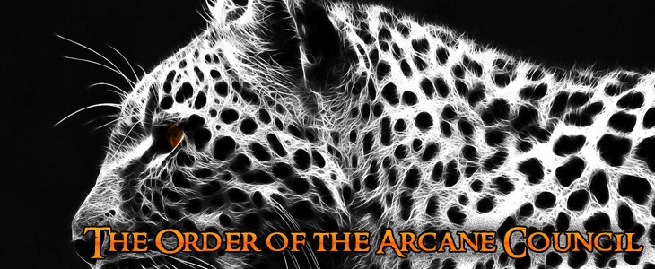 The Order of the Arcane Council