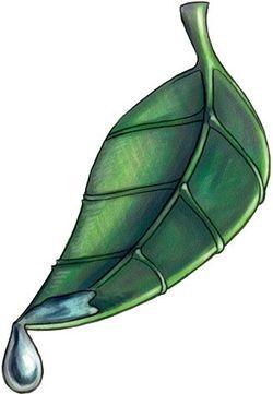 250px gozreh holy symbol