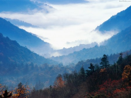 Newfound gap great smoky mountains tennessee 450x337