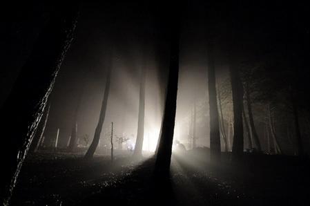 Dark: арт и фото