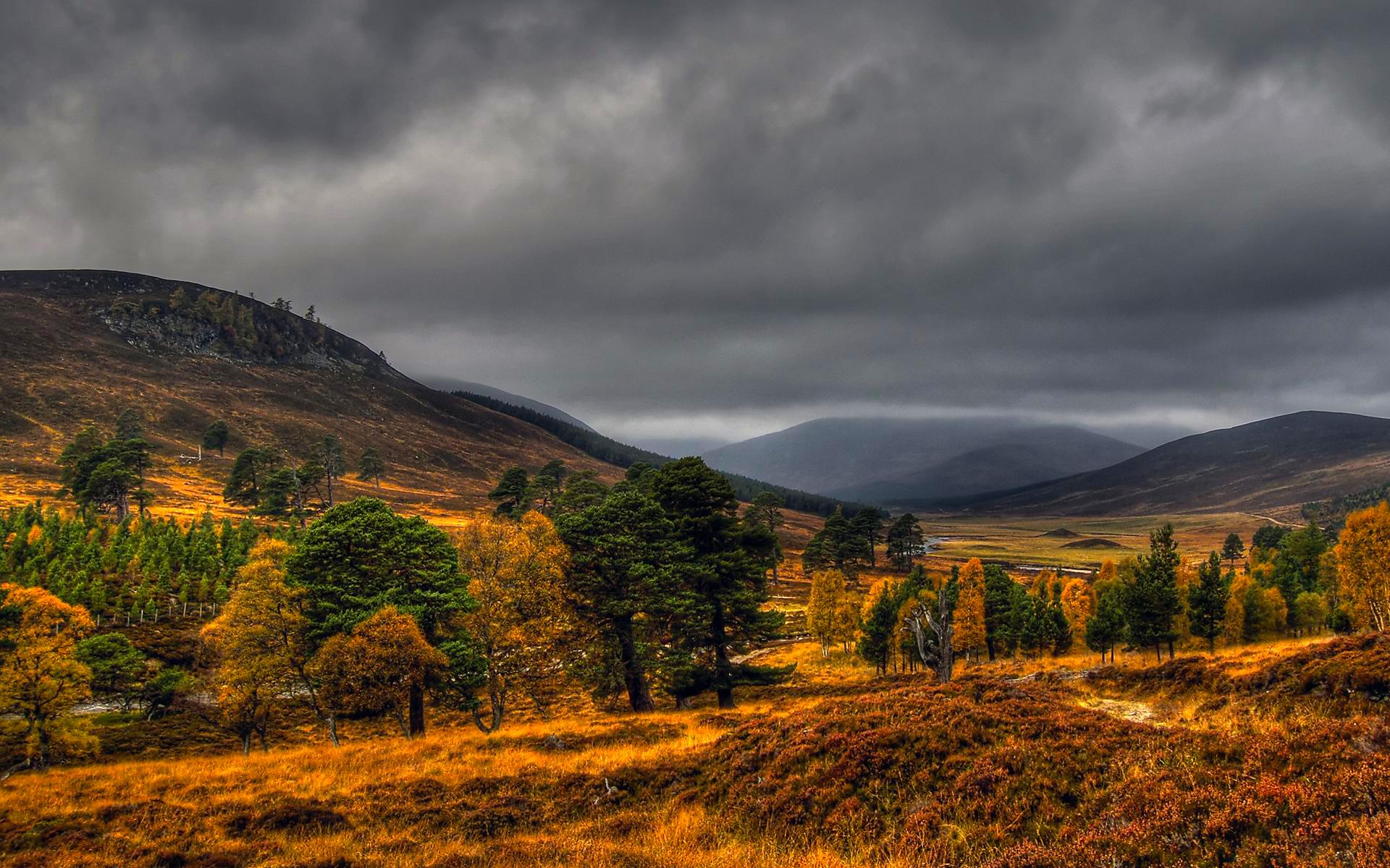 Autumn vale