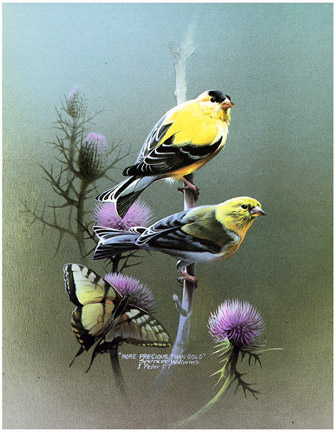Goldfinch s more precious than gold