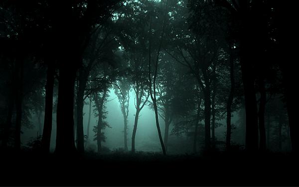 Darkmoor forest