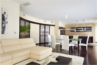 2010 05 simple modern furniture style apartment interior design