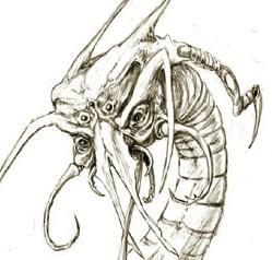 Race centipede bestbutcropcreepy2