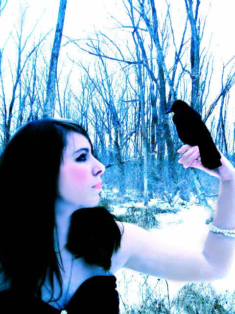 The raven  by theycallherstump