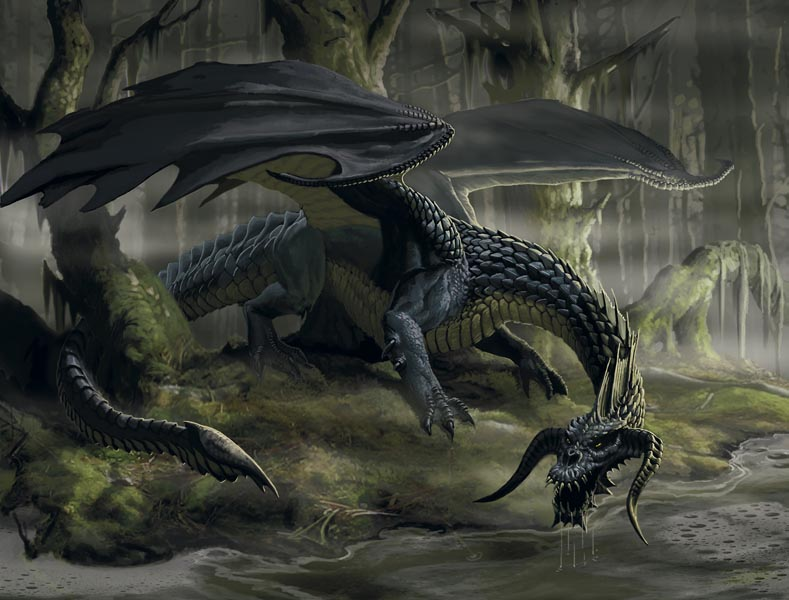 Blackdragon3
