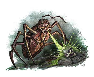 Clockroach image