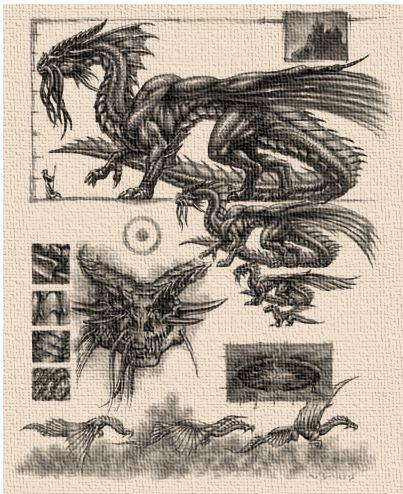 Gold dragon schematics