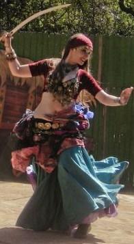 The gypsy traveler gypsies1
