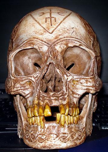 11 04 03 bob skull1