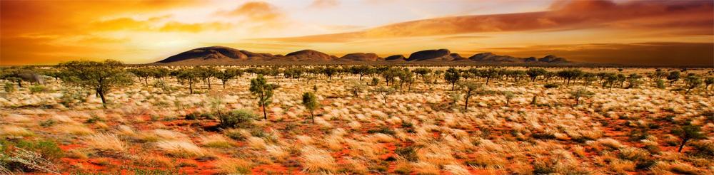 Las arenas rojas 1