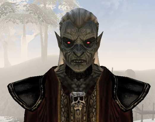 Dark elf necromancer 01